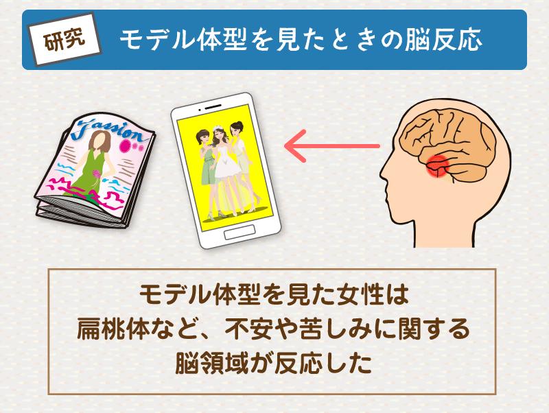 モデル体型を見たときの脳反応